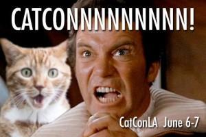 CatConKirk