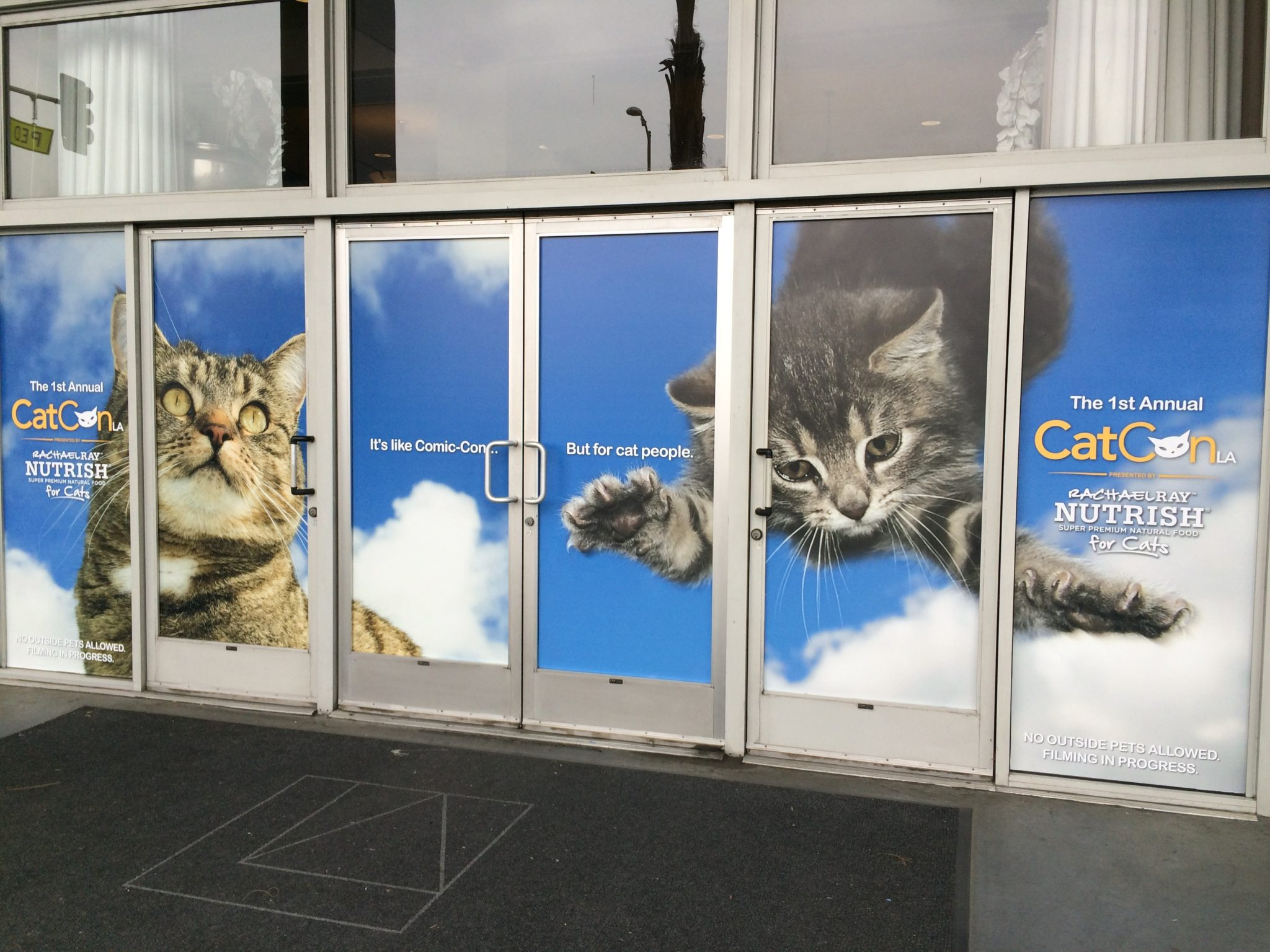 CatCon From A Cat Behaviorist's Perspective