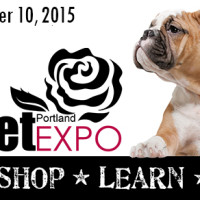 Visit Feline Behavior Solutions at the Portland Pet Expo Oct. 10!