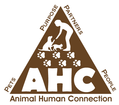 Animal Human Connection – Marci Koski