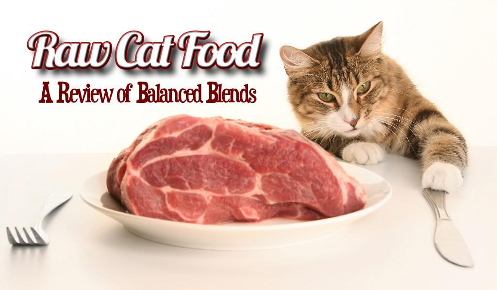Raw Cat Food