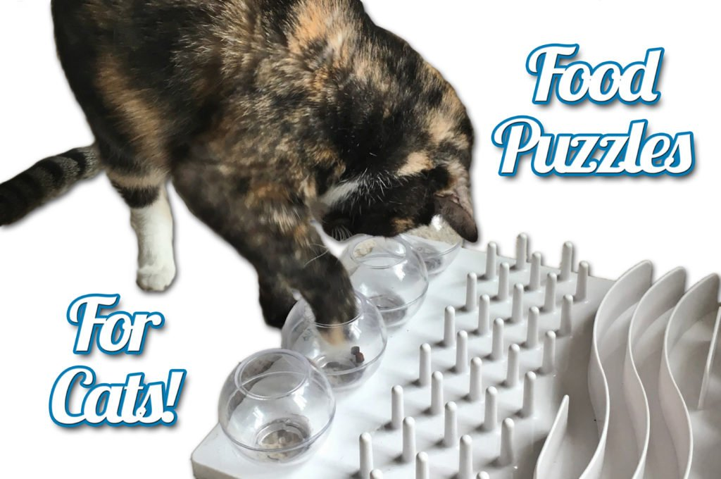 Food puzzles for cats