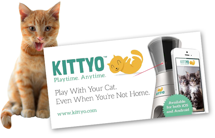 Tech-Inspired Cat Gifts – Kittyo