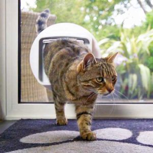 Tech-Inspired Cat Gifts - Sureflap Door