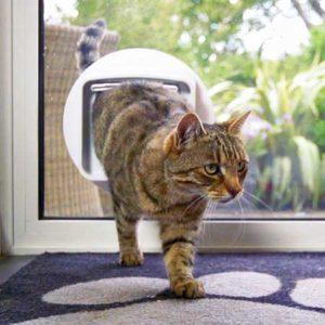 Tech-Inspired Cat Gifts - Sureflap Door
