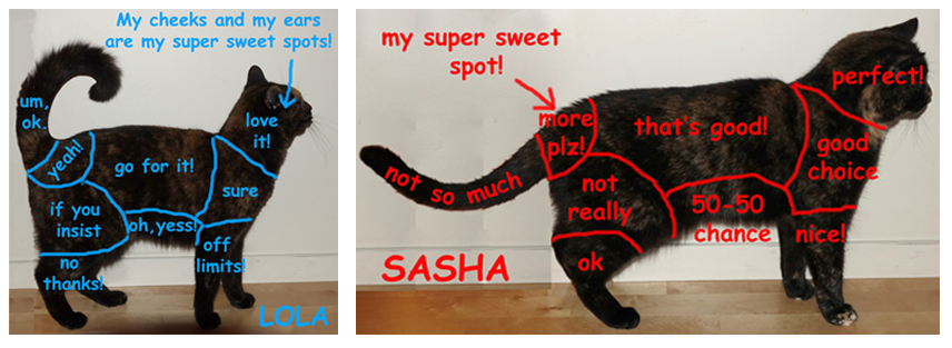 Lola and Sasha Petting Zones