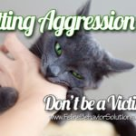 Petting Aggression – Don't be a Bite Victim!