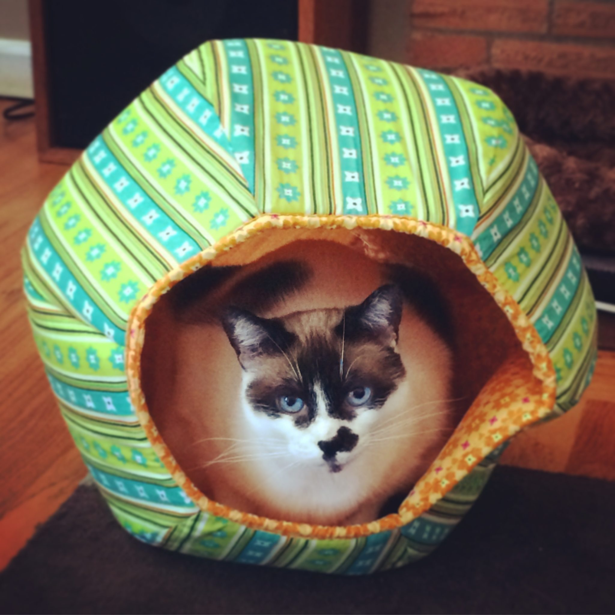 Caves-Cat-Ball