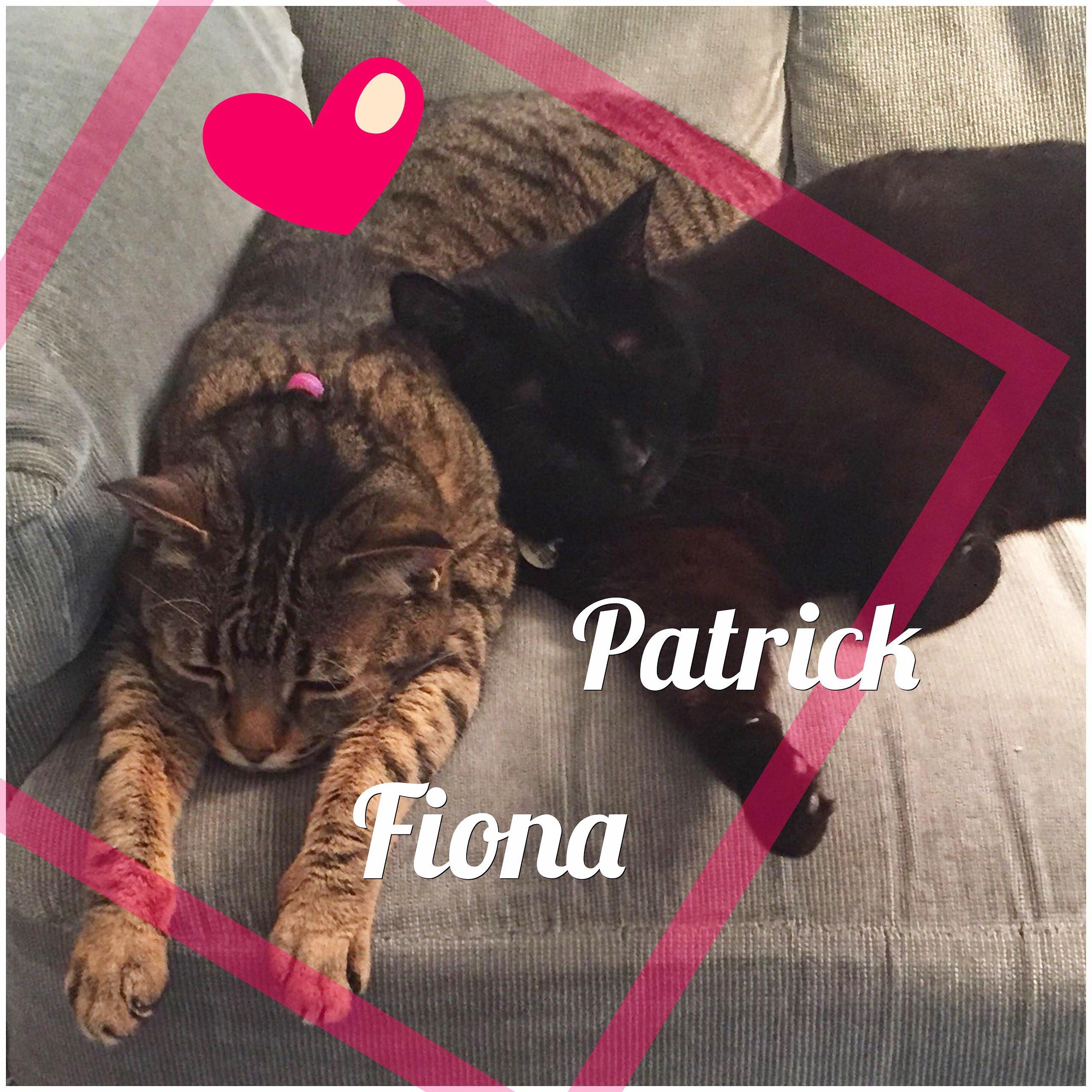 Patrick and Fiona