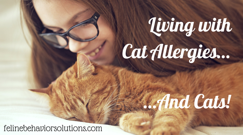 Living with Cat Allergies…